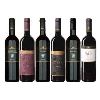 Weinpaket Rotwein 6 x 0,75 lt aus Istrien